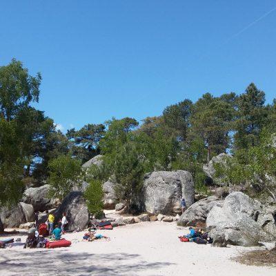 plaža sred gozda, sektor Elephant