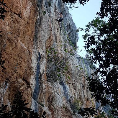 Bjelićeva stijena