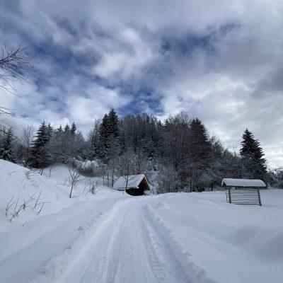 Bela cesta, vodi me ...
