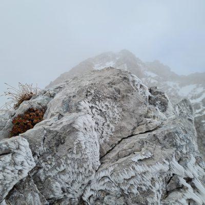 Ledeni vložki. Foto: Tanja Stanič