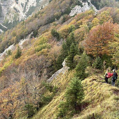 Začetek grebena Ljubeljščice